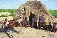 Government makes Bushmen's return to forests difficult
