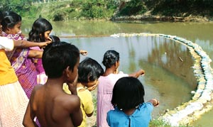 Delayed report on Tripura toxic spill