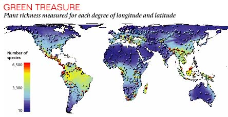New global map that charts plant diversity