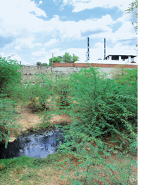 Effluents from Bhilwara textile units flow unabated