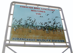 Protest against eco-sensitive tag for Maharashtra bird sanctuary
