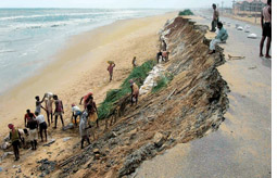 Illegal buildings trigger erosion, threaten Puri beach
