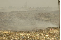 Treating solid waste needs cle (Credit: AGNIMIRH BASU)