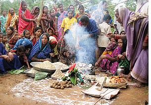 Sal and siali leaves sustaining tribal Orissa