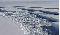 Disintegrating Wilkins ice she (Credit: BRITISH ANTARCTIC SURVEY)