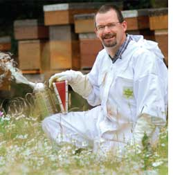 Safety at hand for honeybees a (Credit: UNIVERSITY OF WARWICK)