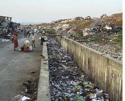 Deonar waste needs treatment<s (Credit: RAJIL MENON)