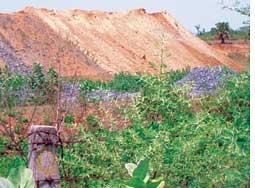 Mine waste dumped in Jadugoda<