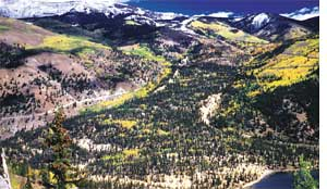 The Slumgullion landslide in Colorado in USA moves at 0.44 mm per hour (Credit: USGS)