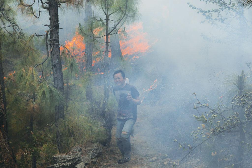 Vikram Chetri is one of the many people from the Northeast who travel to Uttarakhand every year to extract resin from pine forests. He normally earns Rs 25,000 per season, but has earned nothing this year due to the fire