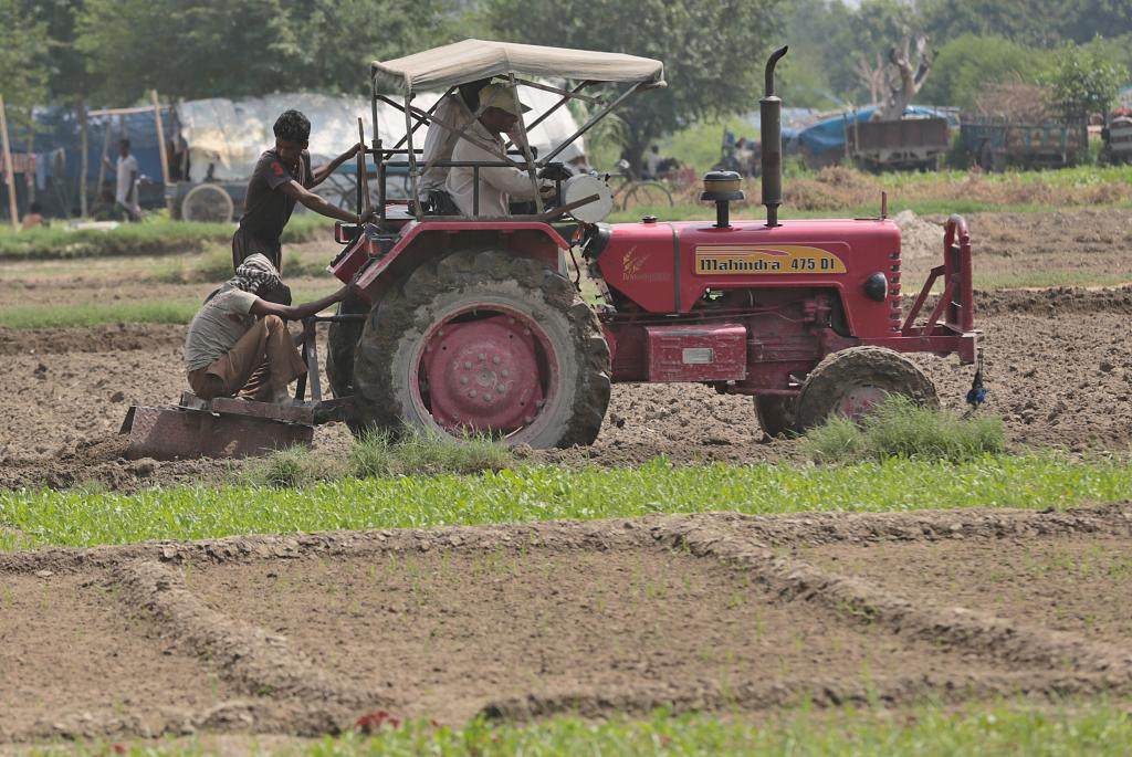 Access to right information is the key to addressing many problems faced in the agriculture sector Credit: Vikas Choudhary