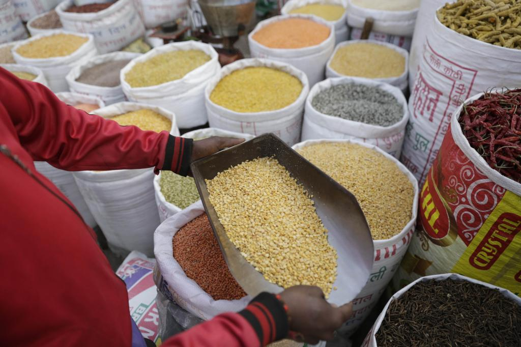 When consumed with cereals, pulses increase the protein quality of meals. They are also rich in micronutrients and b-vitamins, apart from being affordable Credit: Vikas Choudhary