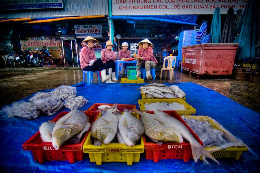 A fish market in Vietnam   Credit: Flickr
