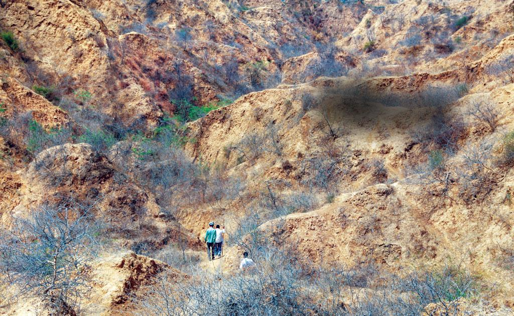 Ravines around Bhindwa village in Morena district. Ravines along the Chambal river are expanding and becoming deeper (Photo: Rakesh Nair)