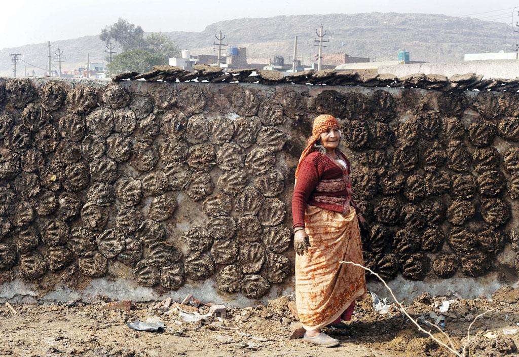 By joining an e-tail supply chain, women in villages get a better price for dung cakes. (Photo: Vikas Choudhary)