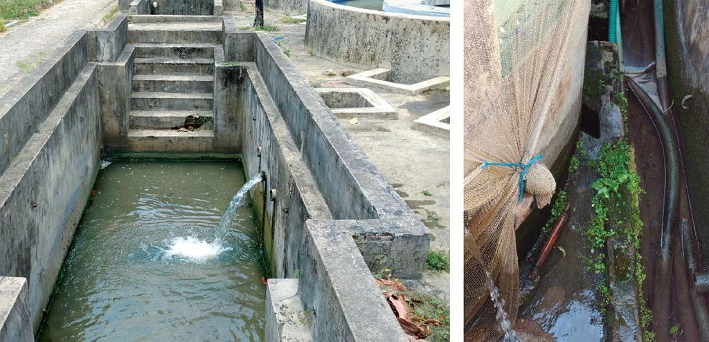 This hatchery in Hooghly reuses its wastewater without treating it, while the other in Bardhaman (right) releases wastewater directly into a drain
