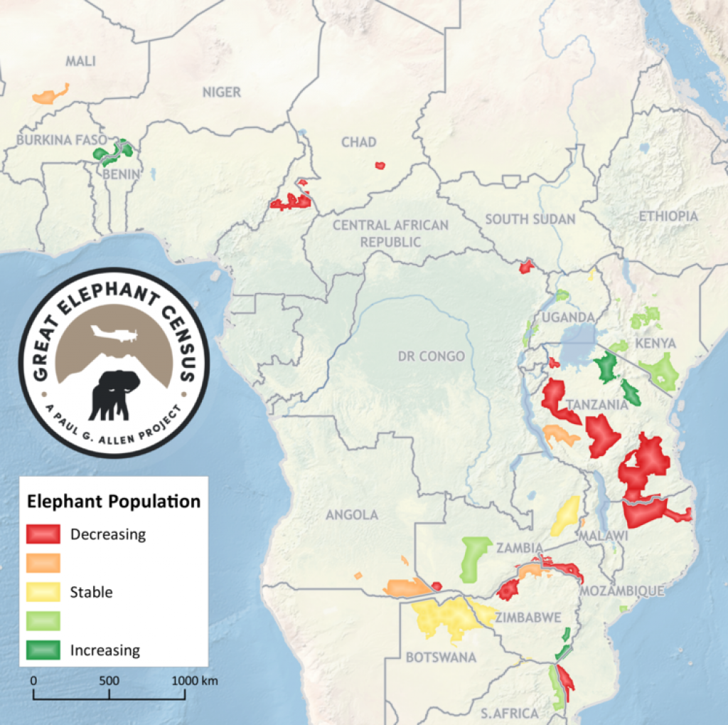 Credit: Great Elephant Census project