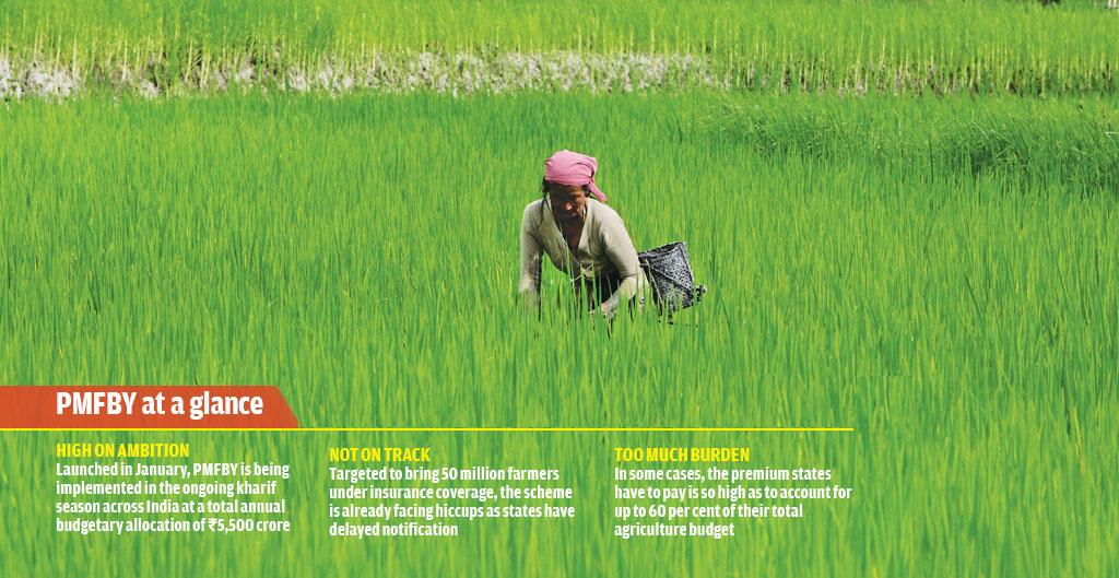 PMFBY was launched earlier this year to bring more farmers across the country under the insurance umbrella (Photo: Vikas Choudhary)