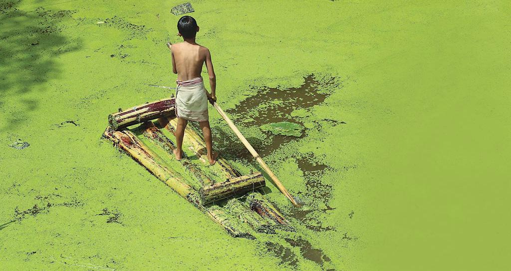 In Assam, heavy rains in the fourth week of April caused the first wave of floods that continued till August, leading to algal growth in the flood water at several places (Photo: Parikhit Saikia)