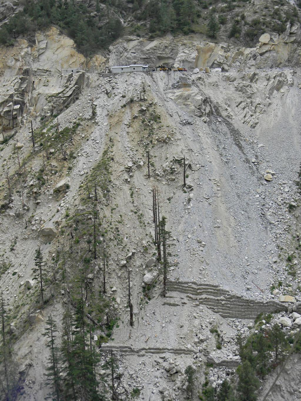 Construction activites of Tidong-1 hydro project destroy rich Deodar & Chilgoza Pine forest.Deforestation in Kinnaur has been a leading cause of soil erosion in the last few decades.
