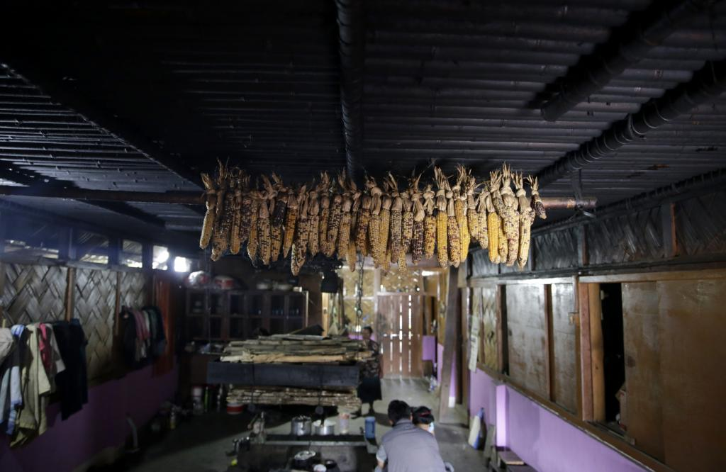 A view of the interiors of an Apatani home made of bamboo and wood. Hanging from the ceiling are corncobs, which are are commonly found in kitchens. They are used as seeds as well as food. Credit: Vikas Choudhary