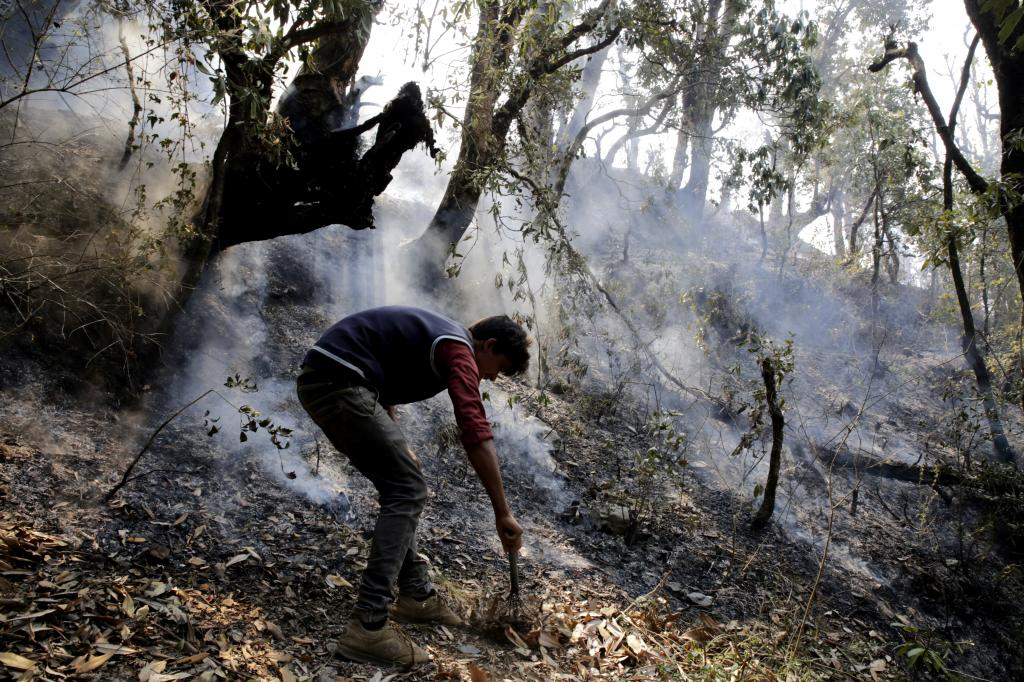 Locals make attempts to extinguish forest fire in Uttarakhand (May 2016) (Credit: Vikas Choudhary/CSE)