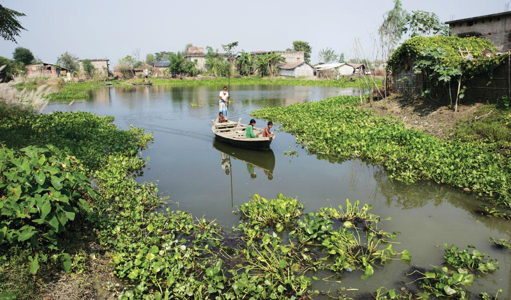 Ghonghepur village of Saharsa lies outside the western embankment of the Kosi, yet for most part of the year it remains surrounded by water. A large area between the Kosi and its tributary Kamla Balan is waterlogged, though it is