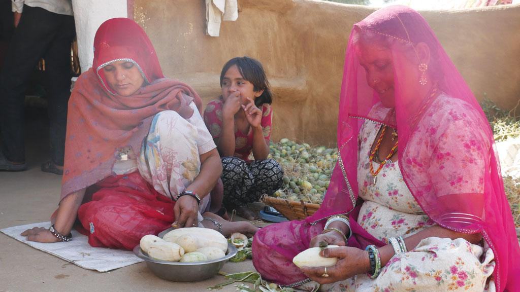 गोदारों की ढाणी (बीकानेर) में काचर और काकडिया काट रहीं महिलाएं। इन फलों को सुखाकर रखा जाएगा ताकि बाद में बाजार में बेचा जा सके।