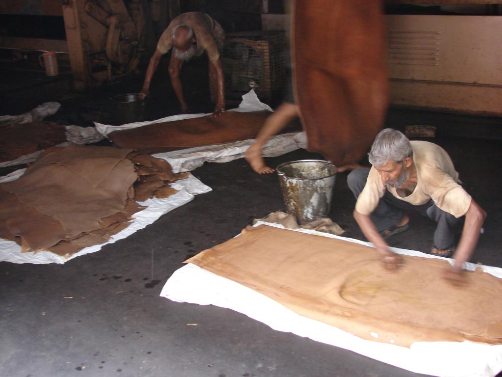 Kanpur in Uttar Pradesh has many tanneries and is a hub of the leather industry (Credit: Sanjeev Kumar Kanchan/CSE)