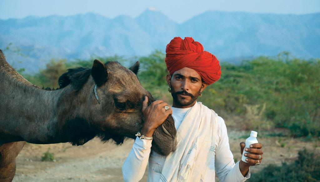 The Raika community of