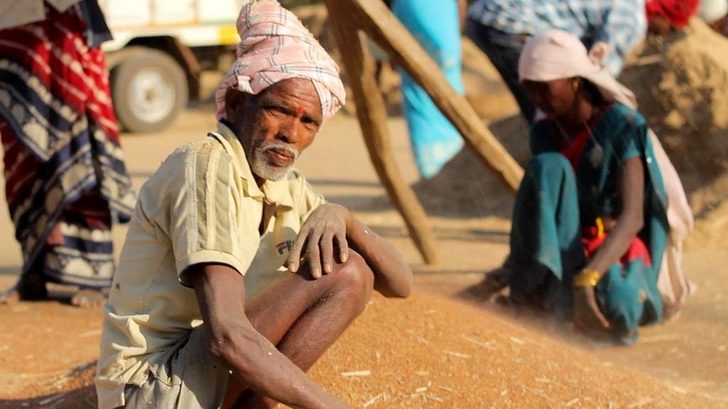 Despite record production of pulses in Kharif season, government imported pulses up to 3.5 million tonnes between April-November 2016. Credit: OXLAEY.com / Flicker