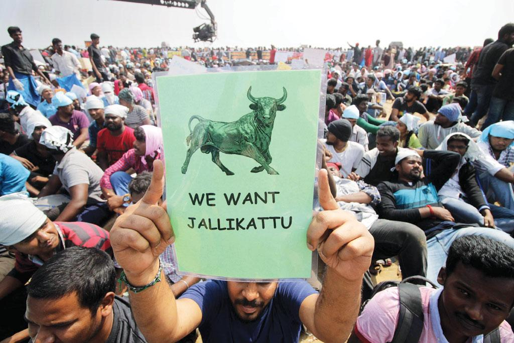 Hordes of