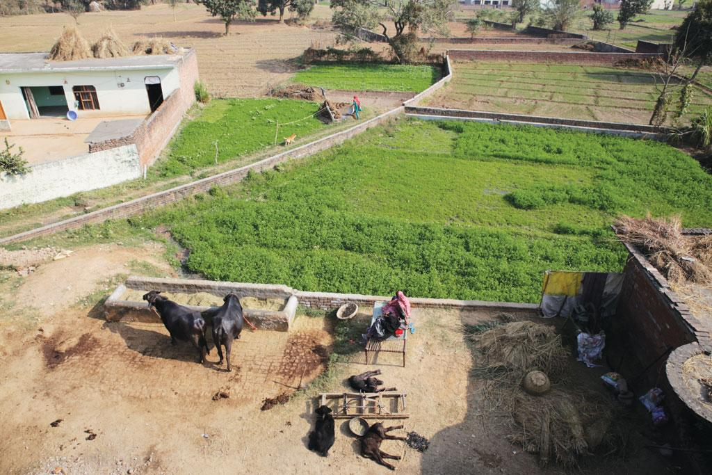Most people in Sukhomajri have