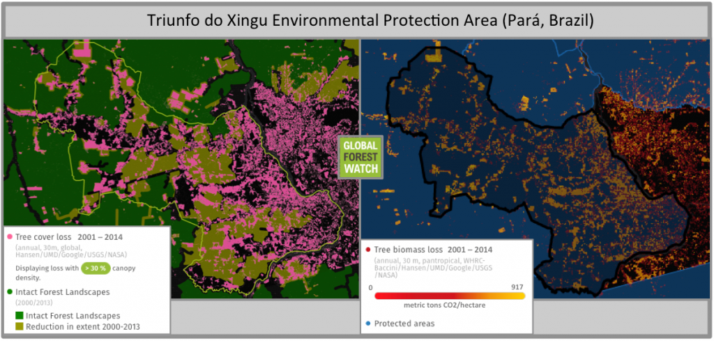 Brazil's Triunfo do Xingu Environmental Protection Area lost nearly 24 per cent of its tree cover between 2001 and 2014. Credit: Global Forest Watch