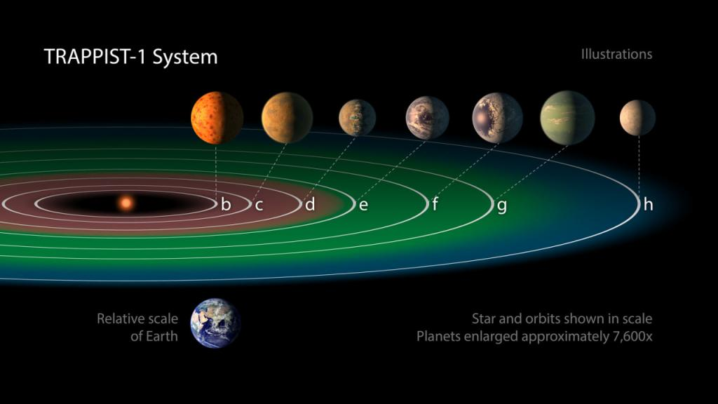 The seven planets could have some liquid water and maybe life on the surface. Credit: NASA