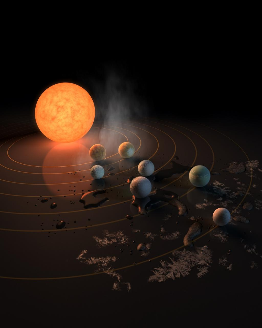 "Three of the planets fall in the conventional ""habitable zone"" of the solar system. Credit: NASA/JPL-Caltech"