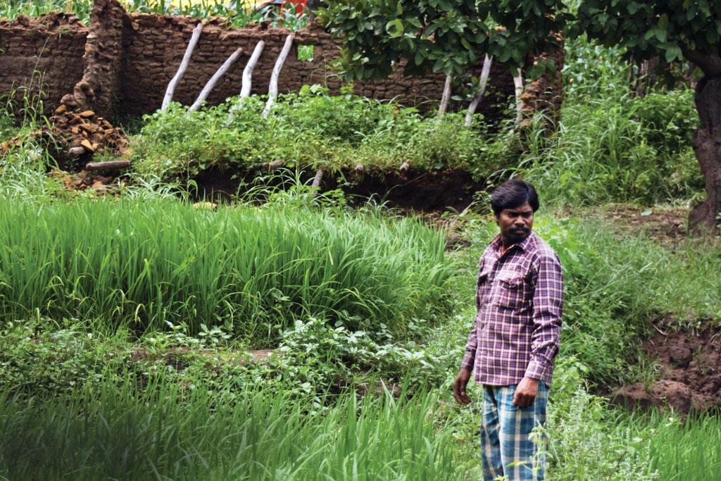 Nandlal Baiga used the compensation money to buy a motorcycle and a diesel pump for irrigating his field. He has returned to the forest after having stayed at a rehabilitation colony for over a year