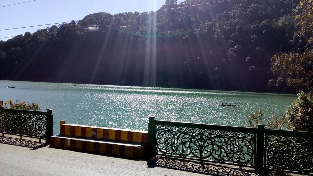 Tree felling within a radius of five km around the lakes of Bhimtal, Nainital, Khurpatal, Sattal and Nauckuchiatal has been banned. Credit: Subhojit/ DTE