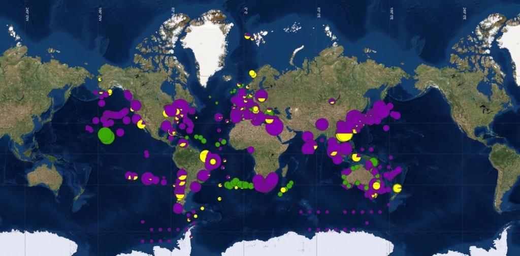 Both the distribution of litter and its interactions with organisms are presented in an interactive map. Credit: AWI