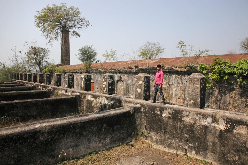 The indigo processing unit near Hardiya village of West Champaran  (Photo: Vikas Choudhary)