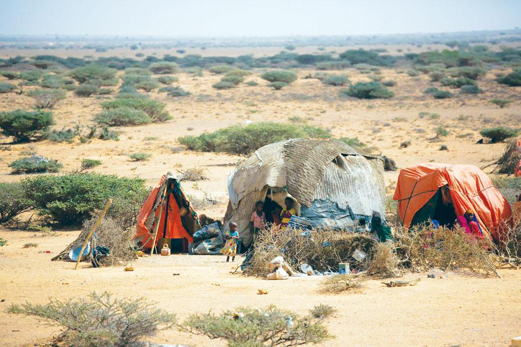 Temporary huts for internally-displaced people at Uusgure village, Puntland, Somalia. Poor rainfall has affected pastoralists hard. They have lost their livestock, including camels and goats, on which they depend for survival (Credit: FAO/S Nguyen)