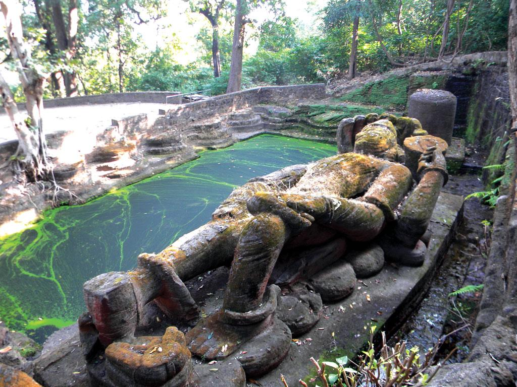 मध्य प्रदेश के बांधवगढ़ नेशनल पार्क में तालाब के बगल में स्थित भगवान विष्णु की मूर्ति, जो नौ मीटर से अधिक लंबी है। तालाब पर हरी परत साइनोबैक्टेरिया है, जो ऑक्सीजन का उत्पादन करता है और जटिल जीवन को संभव बनाता है। ये वायुजीव अभी भी दुनिया के 60 प्रतिशत ऑक्