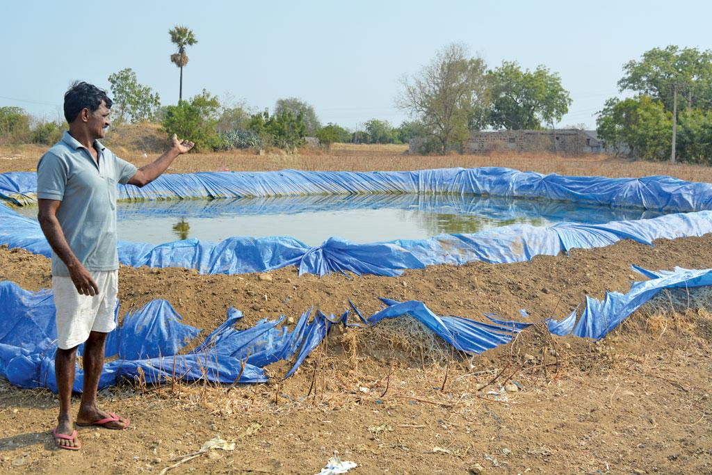 Sanjeev Reddy of Peda Mallepalli village in Andhra Pradesh spent `18,000 to build a farm pond and lined it with plastic to collect whatever little rain falls on his land (Photo: Ayesha Minhaz)