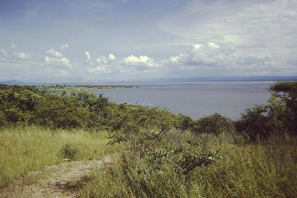 Covering an area of 5,760 sq km, almost half of the lake lies within the Uwanda Game Reserve. Credit: Wikimedia Commons
