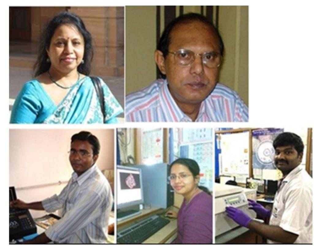Dr Chitra Mandal, first from the top left, and her fellow researchers. Credit: India Science Wire