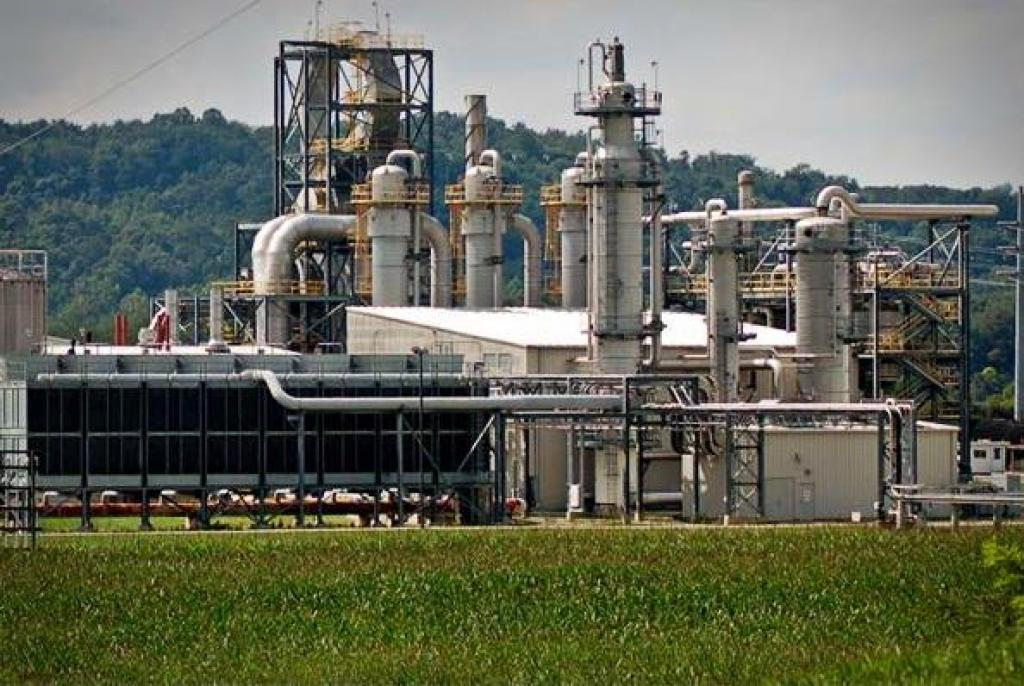 The EIA report does not mention the presence of a reserved forest near the biorefinery (Credit: USDA/Flickr)
