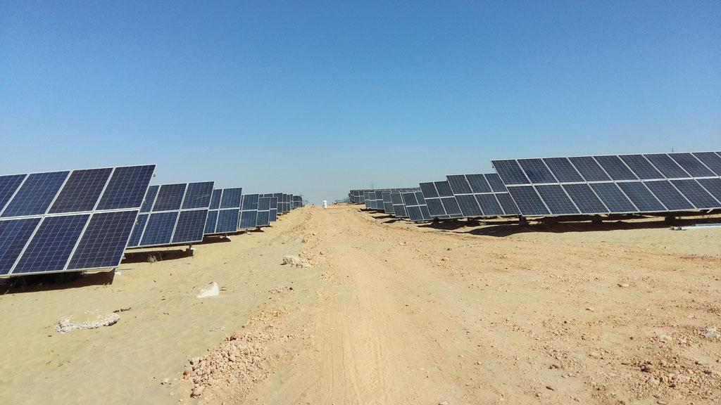 Two of the four developers who won the bids to set up solar plants in the 