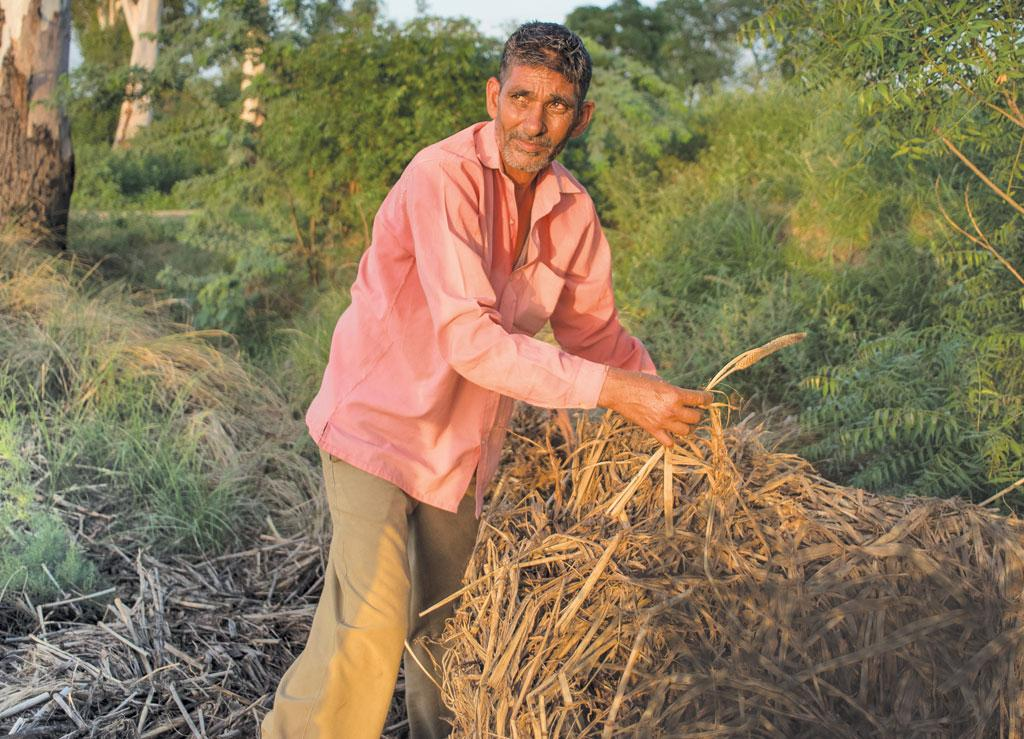 Farmer Ishwar Singh of Haryana's Badheri village says he grew cotton and bajra in kharif 2016, but his insurance premium was wrongly deducted for paddy. He says that despite incurring a loss of  Rs 2 lakh,  his insurance claim was rejected