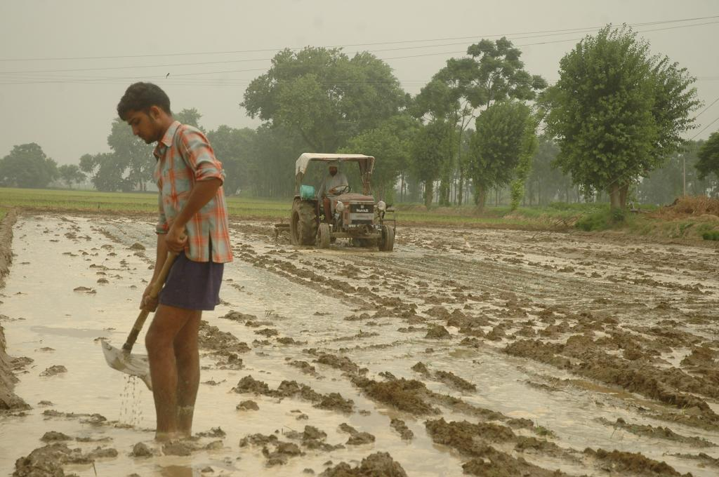 Can farmers afford to invest large sums of money on agriculture without any profits? (Credit: Agnimirh Basu/CSE)