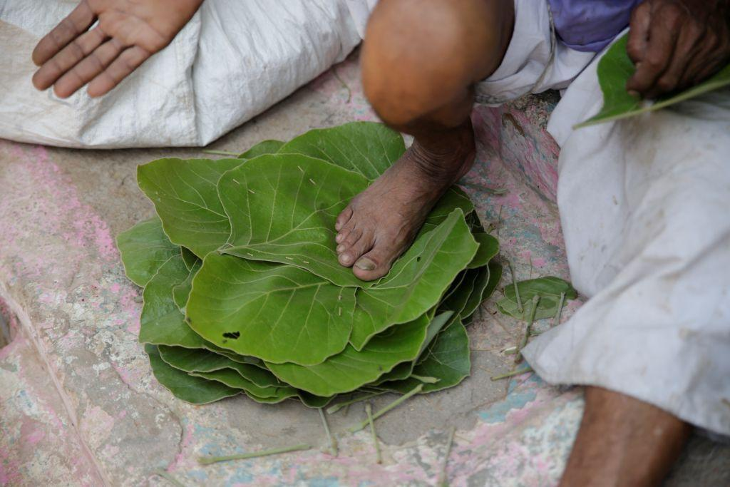Sal Leaf, a minor forest produce that forest-dwelling communities can collect and trade, has been taxed 18 per cent (Credit: Vikas Choudhary/CSE)